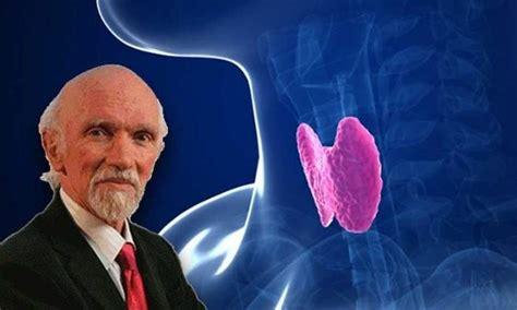 alimenti stimolano la tiroide dr berrino spiega la causa della tiroide non funziona
