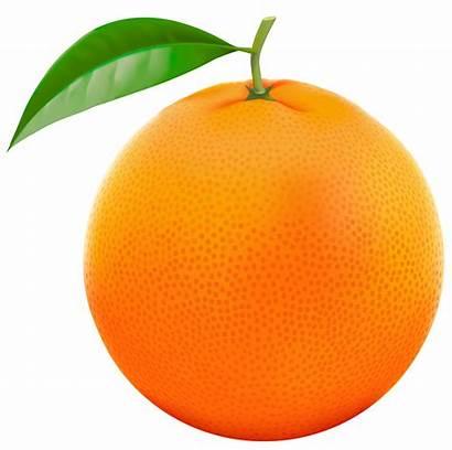 Orange Fruit Clipart Yopriceville Tube Moana Kikie