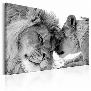 Schwarz Weiß Wandbilder : leinwand bilder l we tier katze schwarz wei afrika natur wandbilder xxl 16 ebay ~ Watch28wear.com Haus und Dekorationen