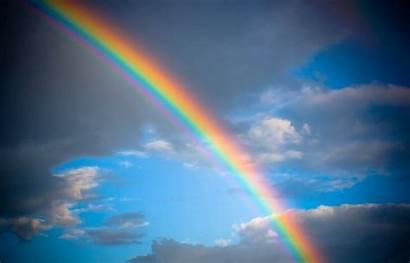 Rainbow Resolution Cat Wallpapers Nature Rainbows Itl