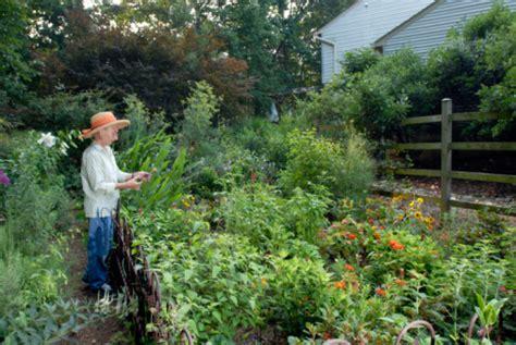 cost gardening money saving garden tips houselogic
