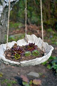 Best Diy Concrete Bird Bath Ideas And Images On Bing Find What