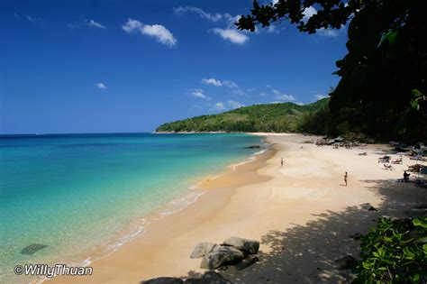 Naithon Beach  What To Do In Naithon Beach  Phuket 101