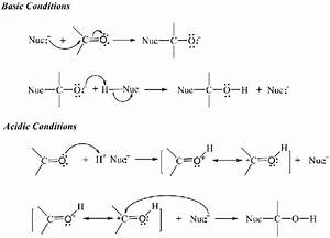 The Reaction Diagrams Of The Nucleophilic Addition