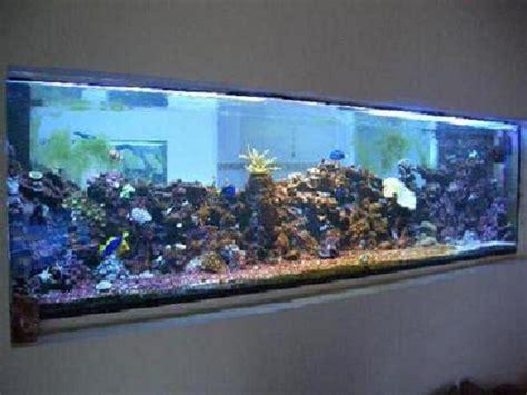 aquarium d eau de mer debutant 28 images aquarium eau de mer d 233 butant 224 voir aquarium