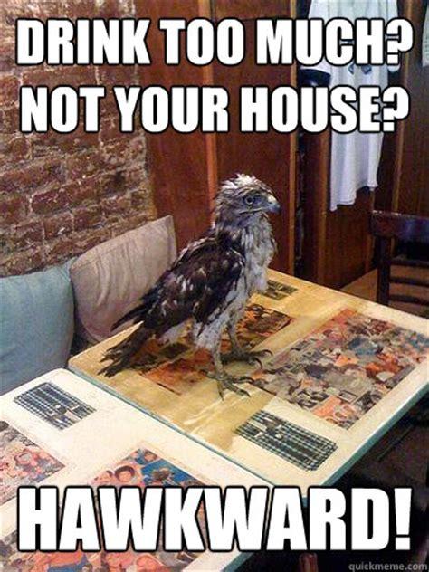 Hawkward Meme - hawkward hawk memes quickmeme