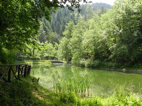 giardino botanico di festa giardino botanico di valbonella parco