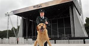 Belfast Vital 2017: Extra security measures in place in ...