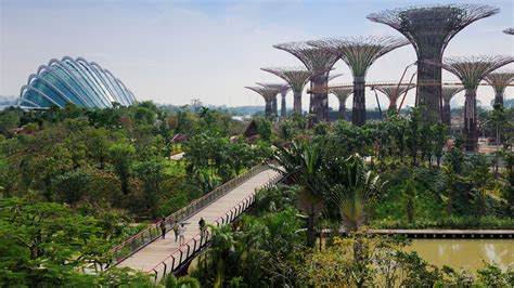 gardens by the bay ceo our story introduction