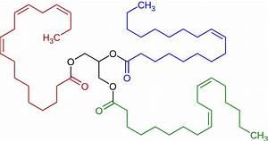 File:Triglyceride unsaturated Structural Formulae V2.svg ...
