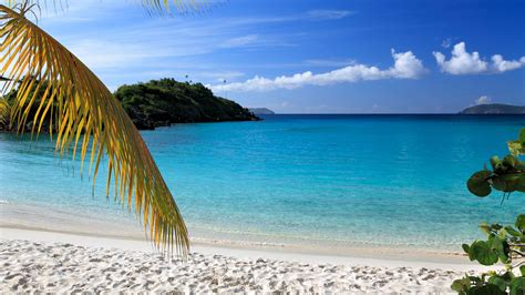 resorts first discount travel cincinnati