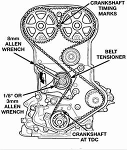 98 dodge neon 2 0 dohc timing belt routing [Solved] Fixya