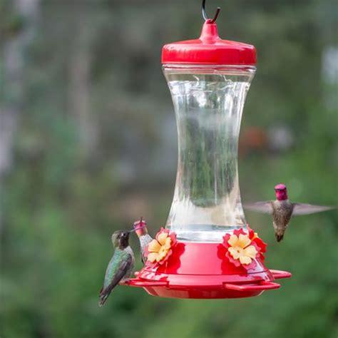 walmart hummingbird feeders pet adjustable perch glass hummingbird feeder