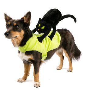 top paw pet halloween black cat rider costume costumes