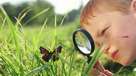 What Is Systematic Observation In Psychology? Referencecom