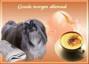1 Morgen Wieviel Quadratmeter : goedemorgen pag 1 shih ~ Frokenaadalensverden.com Haus und Dekorationen