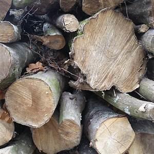 Bois De Charme : bois de chauffage charme longueur 2m alliance bois de chauffage ~ Preciouscoupons.com Idées de Décoration