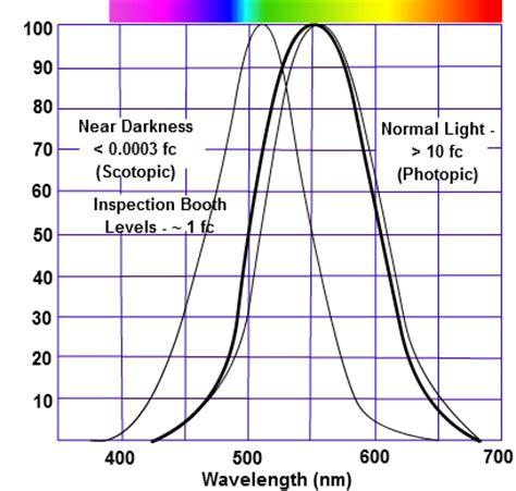 eye sensitivity to light eye s response to light