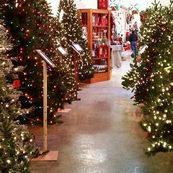 treetime christmas creations 23 photos christmas trees