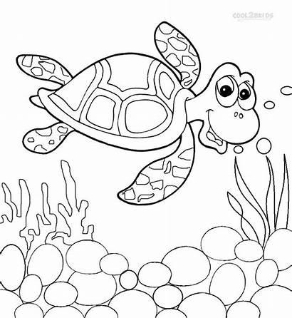 Turtle Coloring Sea Pages Nemo Printable