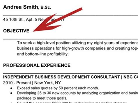 What To Put For Objective On A Resume by How To Write The Resume Business Insider