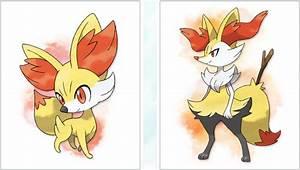 Pokemon X&Y | MeowinPokemons -X&Y-