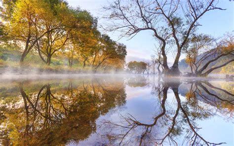 autumn morning lake evaporation trees willow reflection