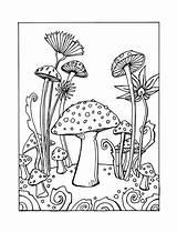 Coloring Mushroom Rocks Mandala Drawing Mushrooms Whimsical Printable Simple sketch template