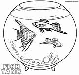 Coloring Aquarium Fish Pages Tank Pets Pet Empty Template Fishbowl Animals Preschool Water Toddlers Templates Animal sketch template