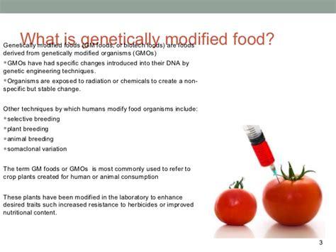 Modification Argumentative Essay by Genetic Modified Food Essay