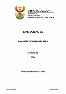 Life Sciences Gr 12 Exam Guide 2014 Eng