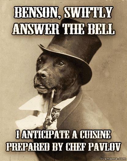 Benson Dog Meme - best of the old money dog meme 16 pics pleated jeans
