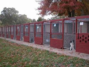 The kennels alpha boarding kennels for Puppy dog kennels