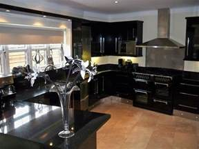 kitchen ideas design cabinets for kitchen kitchen designs black cabinets