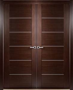 Captivating Modern Interior Double Doors With Delighful