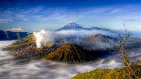 wild indonesia journey
