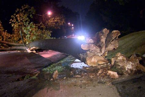 overnight storm brings  trees  power outages
