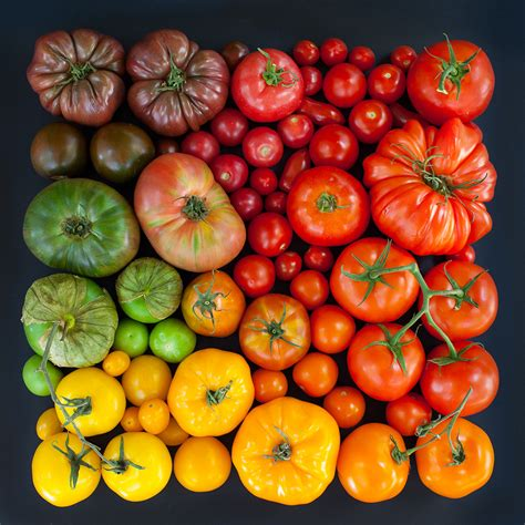 color tomato color coded food and flowers photographed by emily blincoe