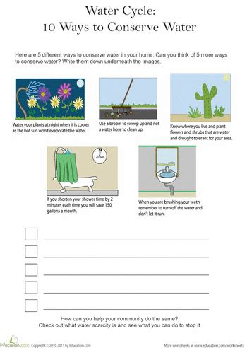 5 ways to conserve water water cycle cub