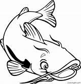 Coloring Catfish Coloringall Printable Sum Dzieci Dla Fish Channel Drawings Upside Kolorowanka Animals sketch template