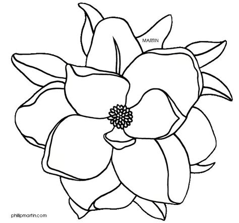 Magnolia Decor by Best 25 Flower Outline Ideas On Pinterest Tattoo