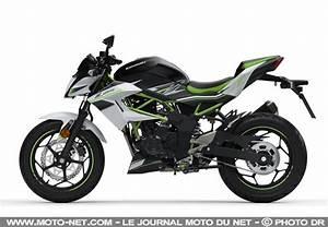 Moto 125 2019 : sportive kawasaki rajeunit sa gamme moto 2019 avec les ninja 125 et z125 ~ Medecine-chirurgie-esthetiques.com Avis de Voitures