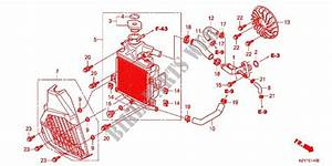 Diagram  Wiring Diagram For Honda Pcx 150 Full Version Hd