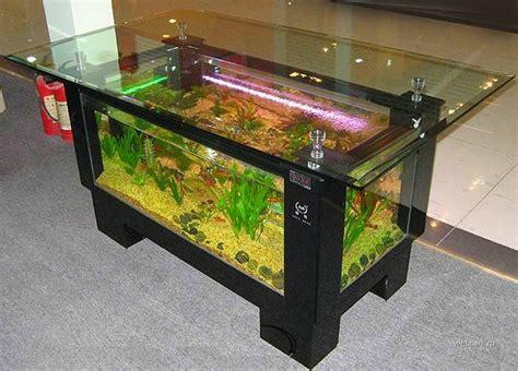 incredible coffee table aquariums