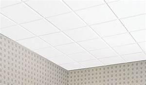 Dalle Pour Plafond : faux plafond en dalle maison travaux ~ Edinachiropracticcenter.com Idées de Décoration