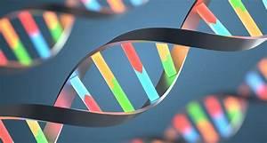 Genetic Diversity Data Offers Medical Benefits
