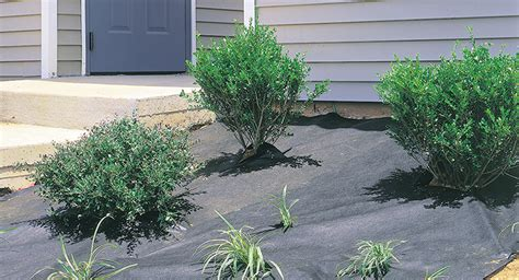 landscaping barriers dewitt weed barrier pro landscape forestry suppliers inc