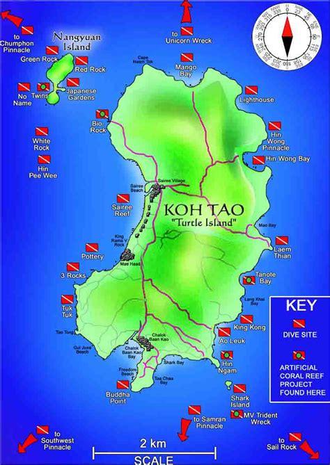 Ko Tao Dive by Dive In Koh Tao Scuba Diving Koh Tao Roctopus