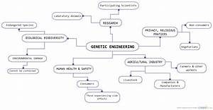 Genetic Engineering Stakeholders   Object Process Model