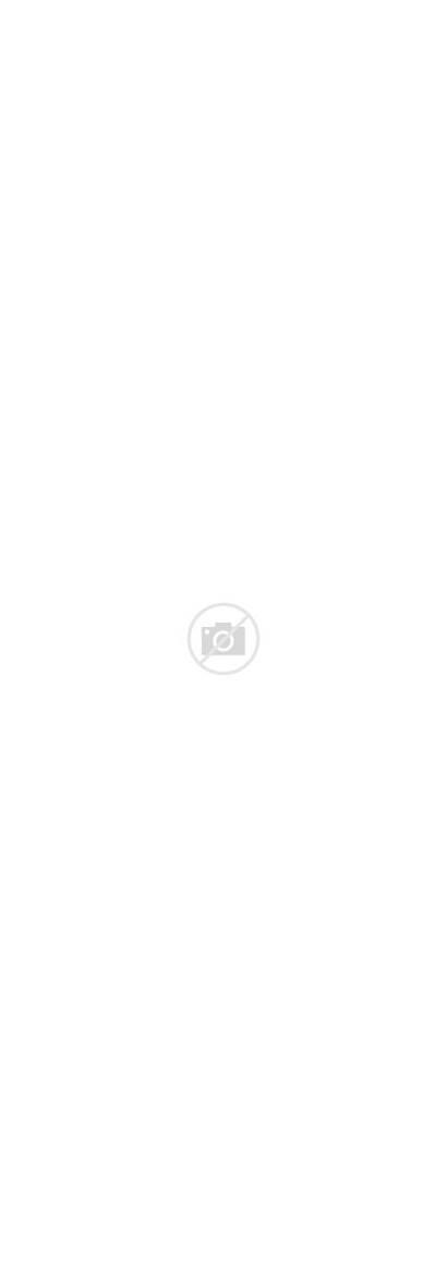Dixie Vodka Southern Mint Views Passionspirits
